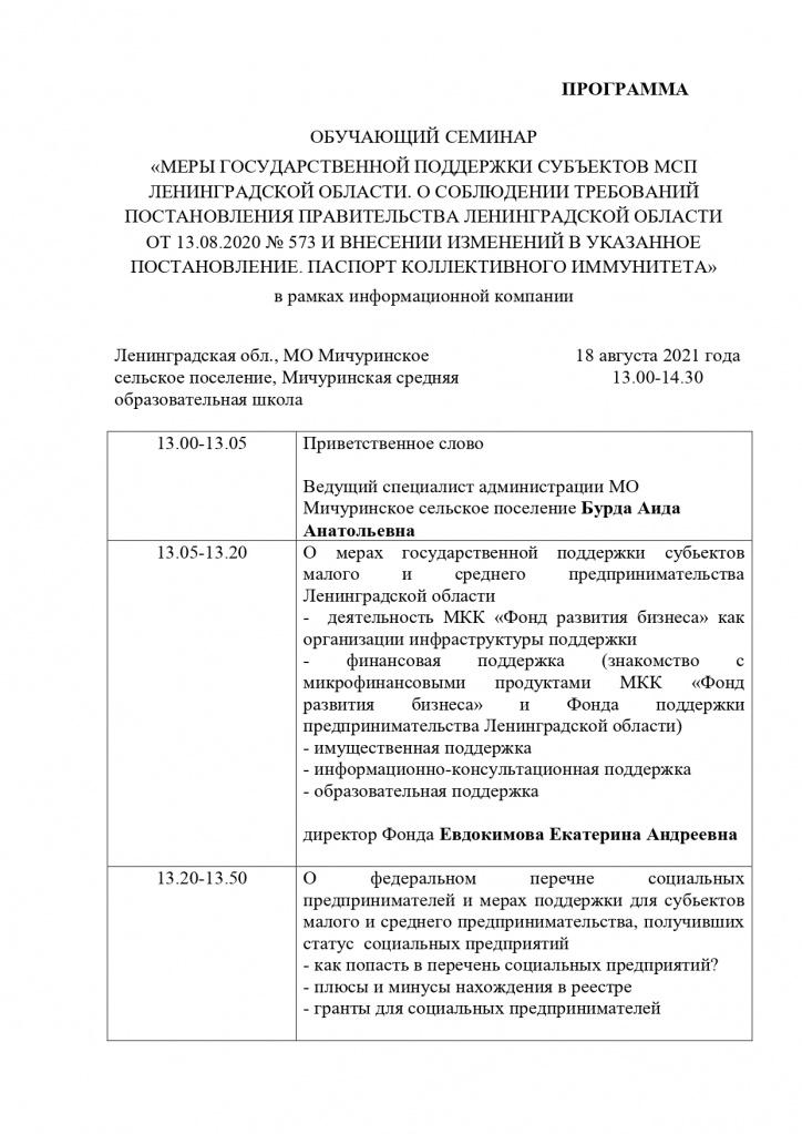 ПРОГРАММА_Мичуринское СП_page-0001.jpg